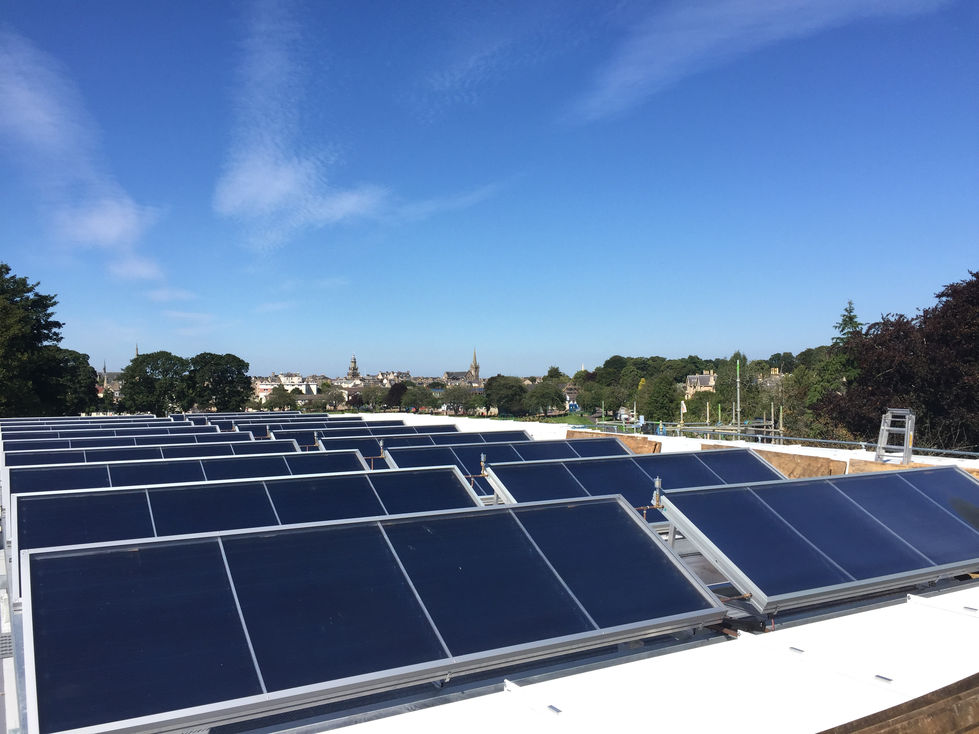 Several rows of solar panels on a flat roof with trees and blue sky